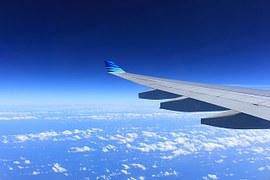 flygvinge
